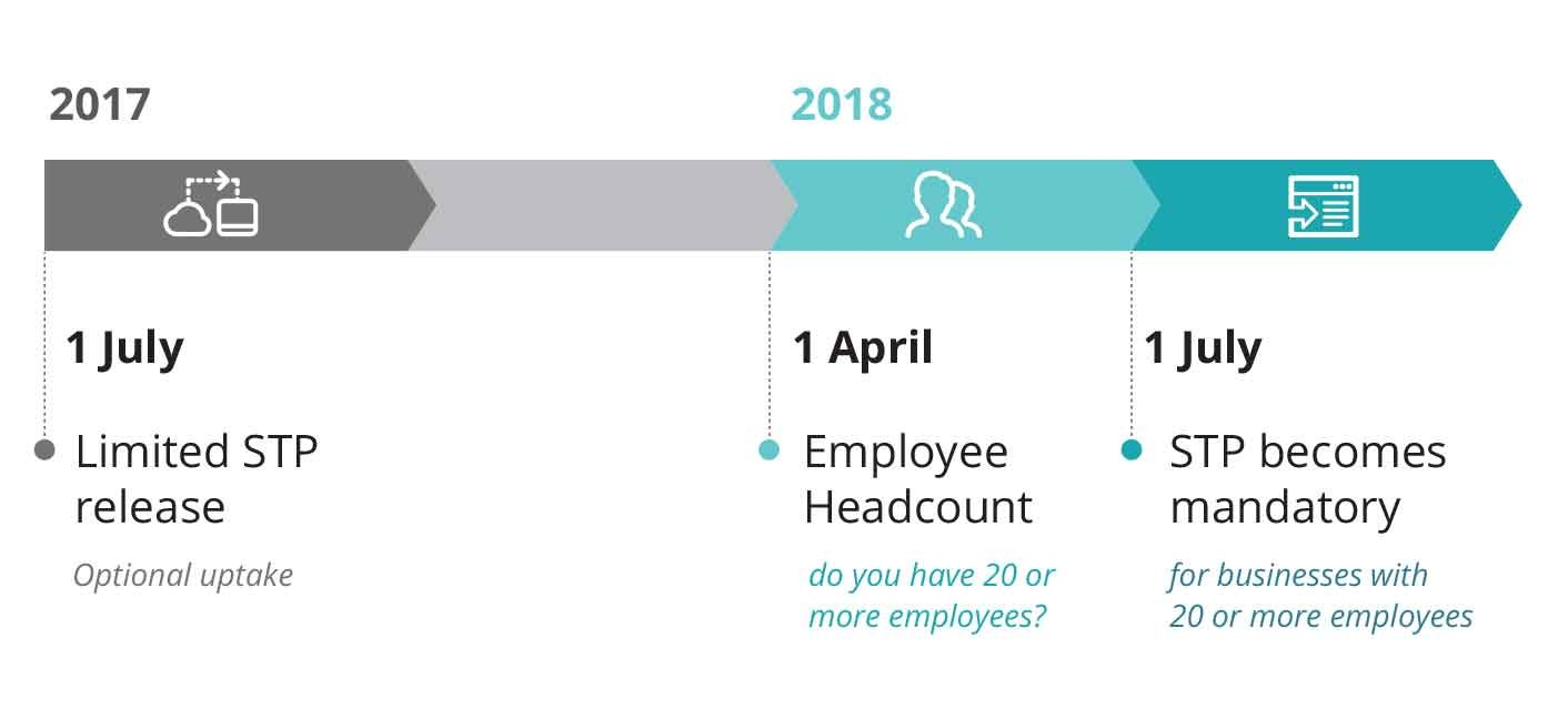 single touch payroll timeline